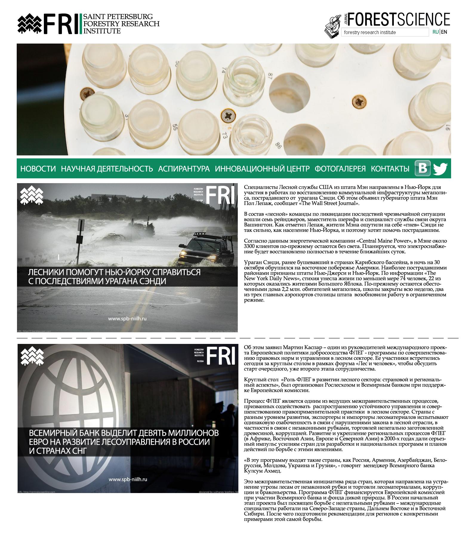 Разработка концепции дизайна главной страницы информационного сайта для Федерального агенства лесного хозяйства