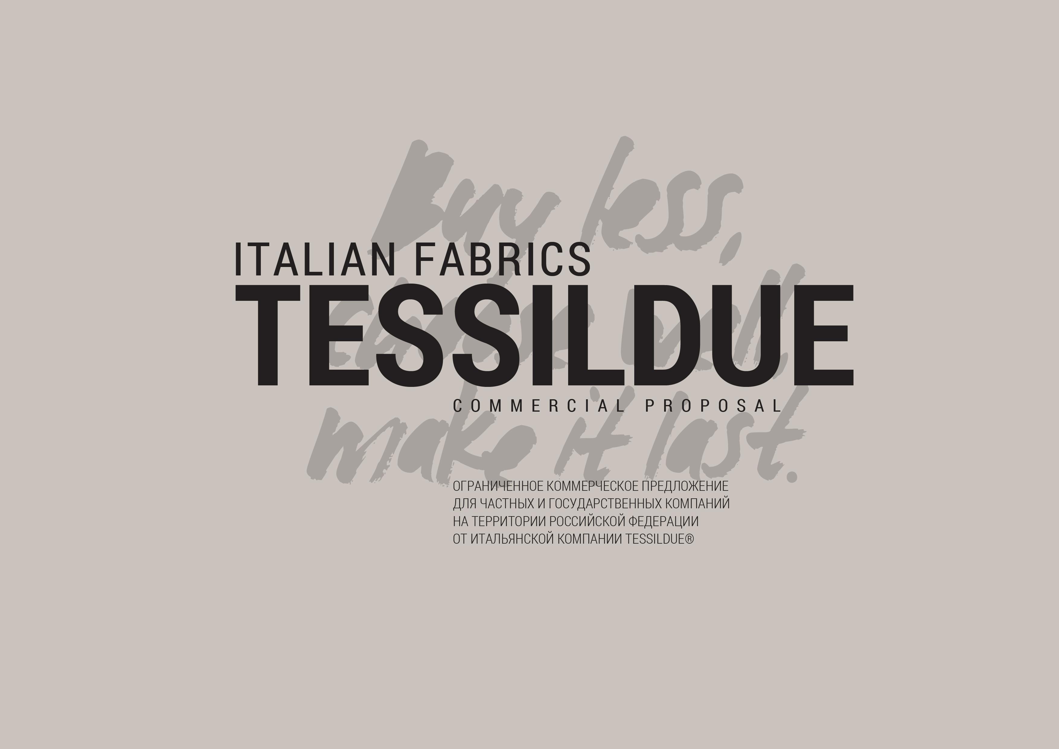 Как сделать бизнес презентацию: компания Tessildue